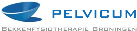 Bekkenfysiotherapeut