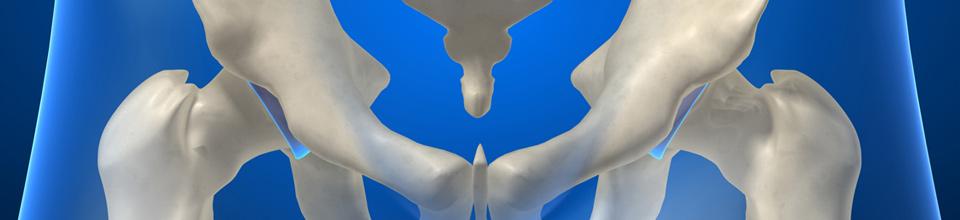 VOL - Oefentherapie bij bekkenaandoeningen: van de behandelbank naar de oefenruimte